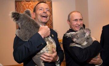 Foto: Kā Obama un Putins pirms samita Austrālijā apmīļoja koalas