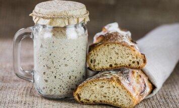 Азбука кухни: закваска для бездрожжевого хлеба