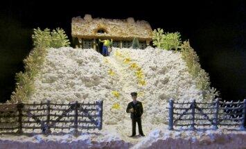 Būs skatāma Andreja Prigičeva izstāde 'Dzeltenais sniegs prezidenta dārzā'