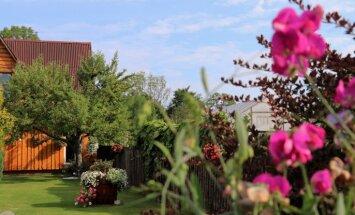 Foto: Krāsām bagātie Tukuma smukumi sakoptākajos īpašumos