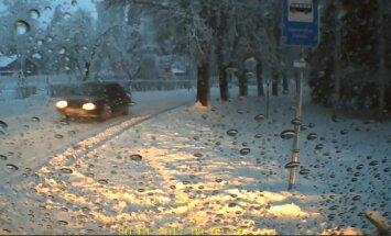 Skolas autobusa šofera video: Steidzīgs 'Audi' apdraud bērnus Stāmerienā