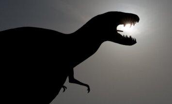 Vandaļi Austrālijā sabojā 115 miljonus gadu senu dinozaura pēdas nospiedumu