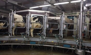 Piensaimnieki gatavojas bankrotiem; aicina Konkurences padomi vērtēt cenas veidošanu veikalos