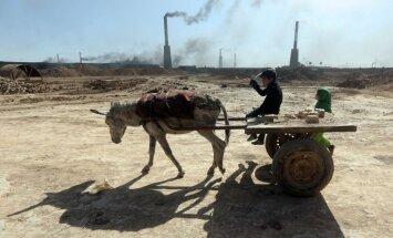 Irākas bērnu skarbā ikdiena - fizisks darbs ķieģeļu fabrikā