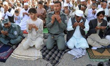 Философ: представление ислама по модели христианства — ошибка Европы
