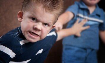 Agrīna bērna nodošana bērnudārzā – nozīmīgs faktors bērnu distresa attīstībai