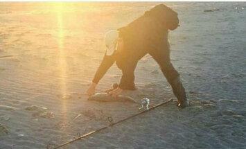 Makšķernieks vai gorilla: internetu samulsina ērmīgs foto