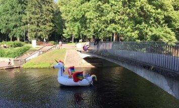 Мост, вода, единорог. Молодежь развлекается в парке Кронвальда