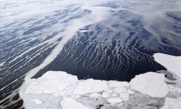 'Jelgavas roņu' vadītājs sekmīgi noslēdzis dalību stafetes peldējumā starp Krieviju un Aļasku