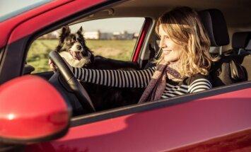 Названы наиболее покупаемые женщинами Латвии марки машин