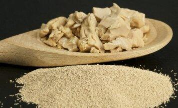 Vai maizes raugs ir kaitīgs veselībai? Speciālistu uzskati atšķiras