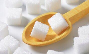 """В Латвии нет желающих возрождать """"убитую Евросоюзом"""" сахарную промышленность"""