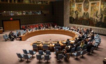 Совбез ООН получил проект особенной резолюции по Сирии