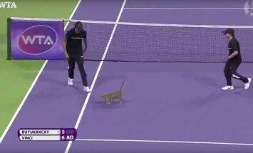 Video: Mincis nolemj iejaukties svarīgā Dohas WTA tenisa turnīra spēlē