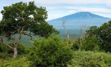 Japāna protestē pret Krievijas ministra vizīti Kuriļu salās