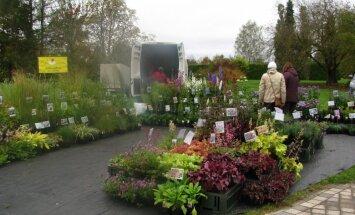 Foto: Salaspils botāniskajā dārzā norit ražas svētku gadatirgus