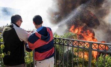 Нетаньяху: умышленный поджог лесов будет расцениваться как терроризм