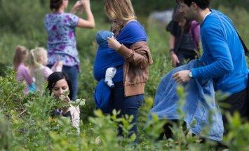 Foto: Madonas pusē aizvadīti melleņu svētki