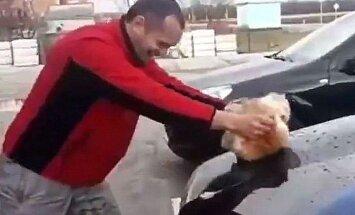 Video: Krasnodarietim draud sods par 'Mercedes' mazgāšanu ar kaķi
