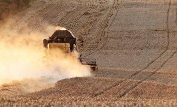 Ražas novākšana ir apgrūtināta visā Latvijā, pauž 'Zemnieku saeima'