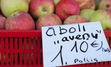 Polijas ābolu pieplūdums tirgū gaidāms augusta beigās; tirgotāji pagaidām mierīgi