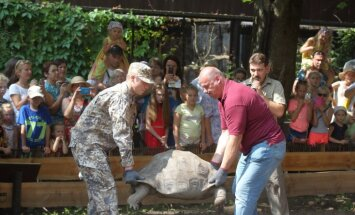 ФОТО: Мэр Риги и министр обороны взвесили черепах в зоопарке
