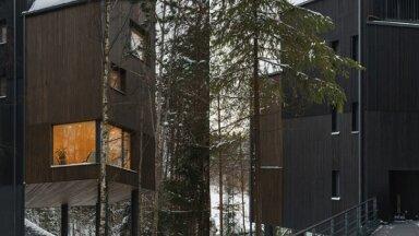 Krievijas mežos tapusi neparasta māja 'uz kājas'