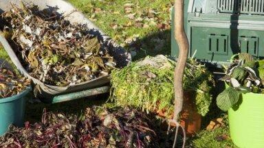 Kad dārzā liekas rudens lapas un āboli – kā ierīkot kompostu