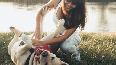 Собаки для всех: какие породы подойдут для детей, пожилых людей и спортсменов