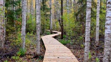 10 brīnišķīgas dabas takas, kurās baudīt pavasari