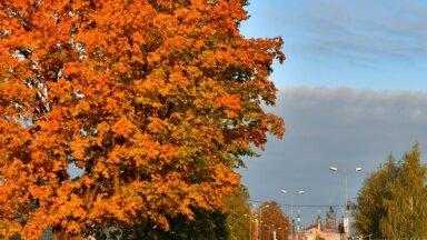 Rudenīga fotopastaiga pa Daugavas lokos izauklēto Jēkabpili
