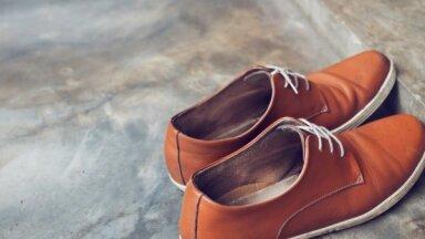 Скрипит обувь - что делать?