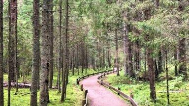 No 21. oktobra apmeklētājiem slēgtas Līgatnes dabas takas un vairāki dabas centri