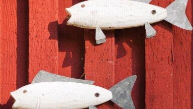 Covid-19 skartais zivju pārstrādes uzņēmums 'Līcis-99' atsācis darbību