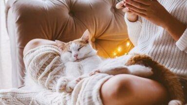 Вкусно есть, больше спать и встречаться с друзьями. 9 советов, которые помогут приятно укрепить иммунитет осенью