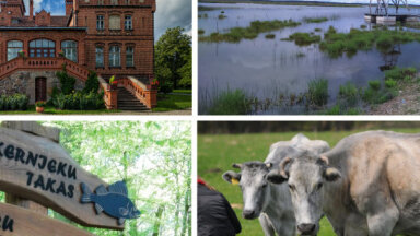 13 idejas aktīvai atpūtai Kurzemē: dabas takas, skatu torņi un interesanti objekti