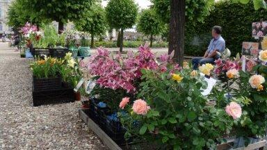 17 июля во французском саду Рундальского дворца пройдет большая летняя ярмарка