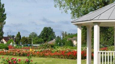 17 июля в Национальном ботаническом саду в Саласпилсе состоится ярмарка