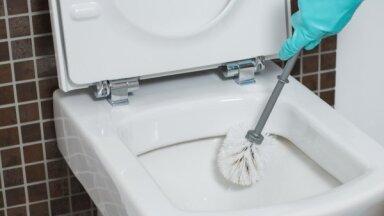 Вопрос, который вы боитесь задать: как почистить вещи, которые вы используете для чистки туалета
