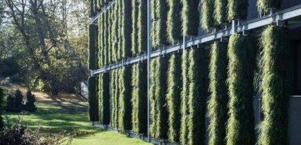 ФОТО: В Литве появилось первое здание-растение