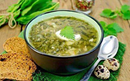 Разнообразные рецепты популярного щавелевого супа с яйцом