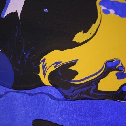 Foto: Repšes piecgadīgā dēlēna gleznu izstāde