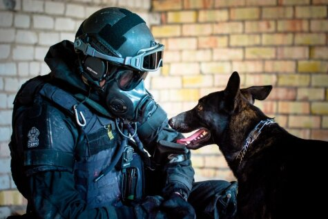 Служить и защищать: 8 действительно классных фото латвийской полиции