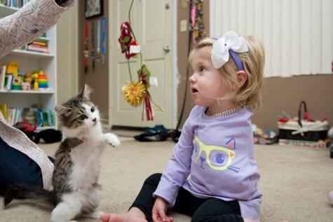 Kaķēns ar trijām ķepām kļūst par draugu meitenītei ar amputētu roku