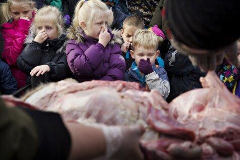 Dānijas zoodārzā bērnu acu priekšā sagriež gabalos lauvu