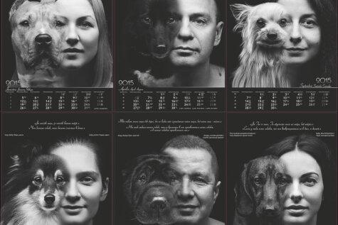Сделано в Латвии и с любовью: благотворительный календарь в помощь собачьим приютам