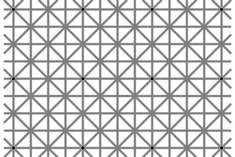 Никто не может увидеть на этой картинке сразу все 12 черных точек. А ты?