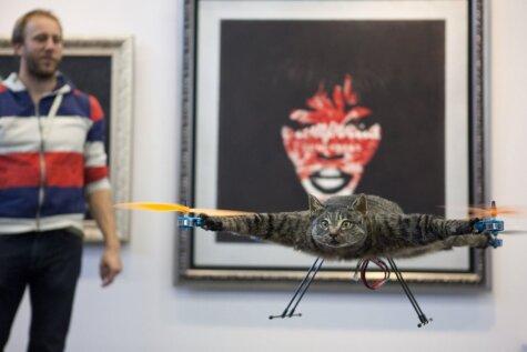 Художник, поднявший в воздух кота, страуса, крысу и акулу, взялся за корову-вертолет