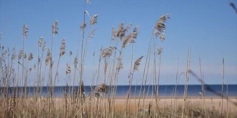 Синоптики: в Латвии ожидается похолодание