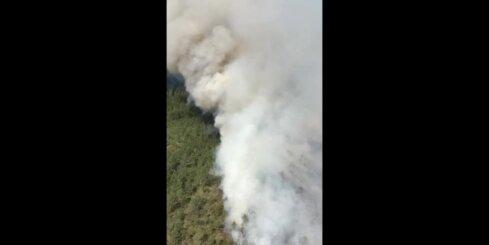 Mazsalacas novada Ramatas pagastā lielā platībā deg purvs
